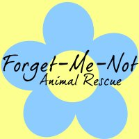 Sara, President/Forget-Me-Not Animal Rescue