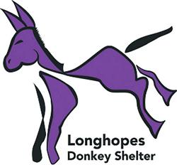 Shannon, Longhopes Donkey Shelter