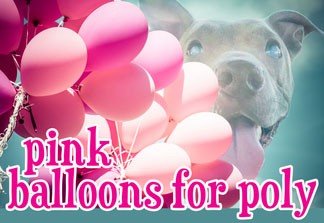 PINK BALLOONS FOR POLY