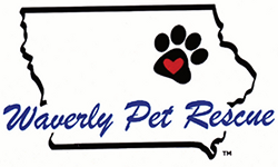 Sheri, Founder/Waverly Pet Rescue