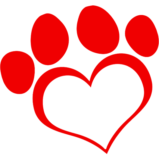 Valentines Day Paws